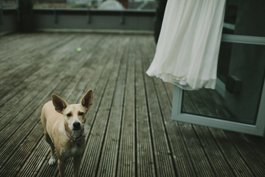 Alternative Wedding Photography Scotland 207