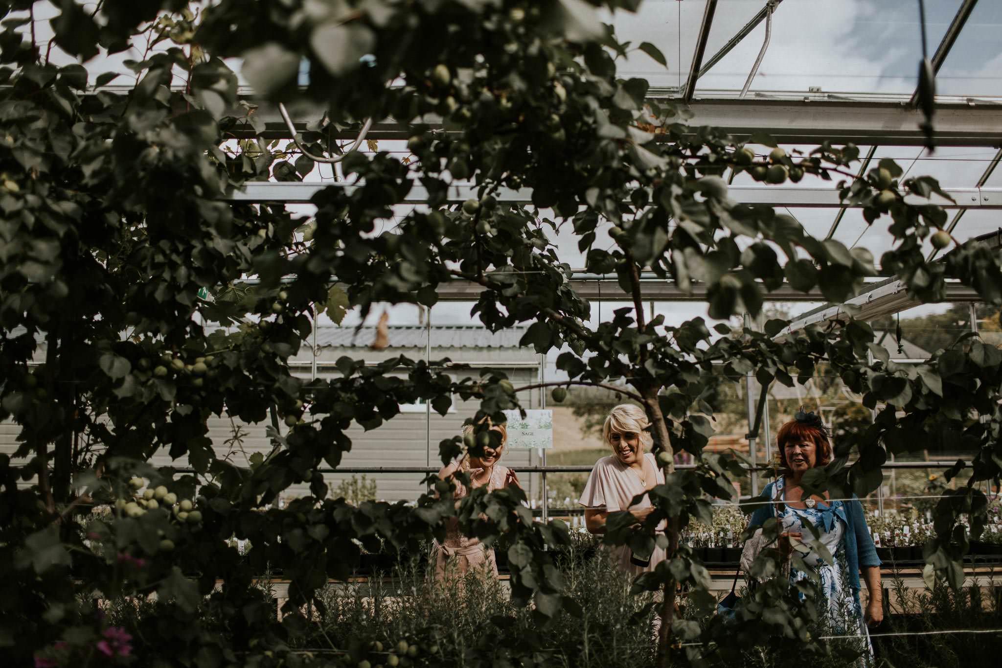 secret-herb-garden-edinburgh-vegan-wedding-040
