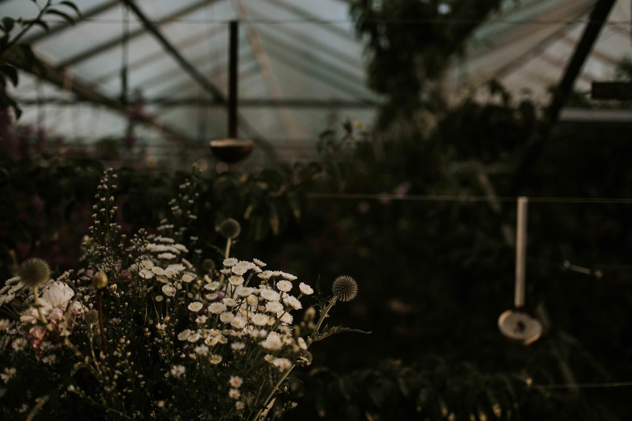 secret-herb-garden-edinburgh-vegan-wedding-076
