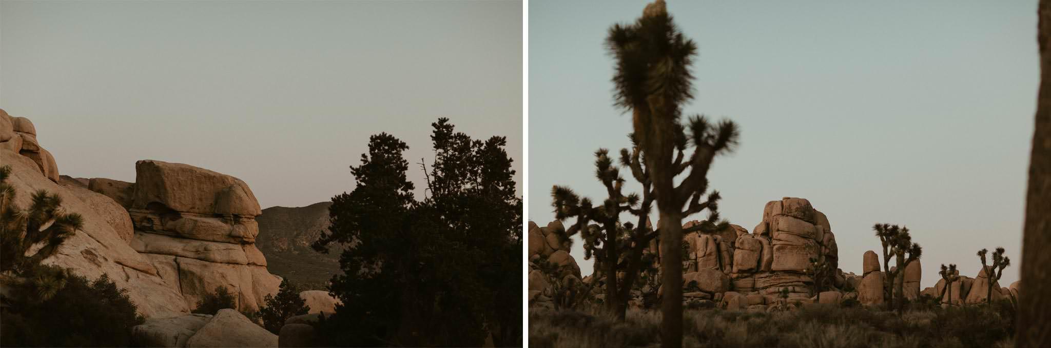 joshua-tree-photography-elopement-wedding-036