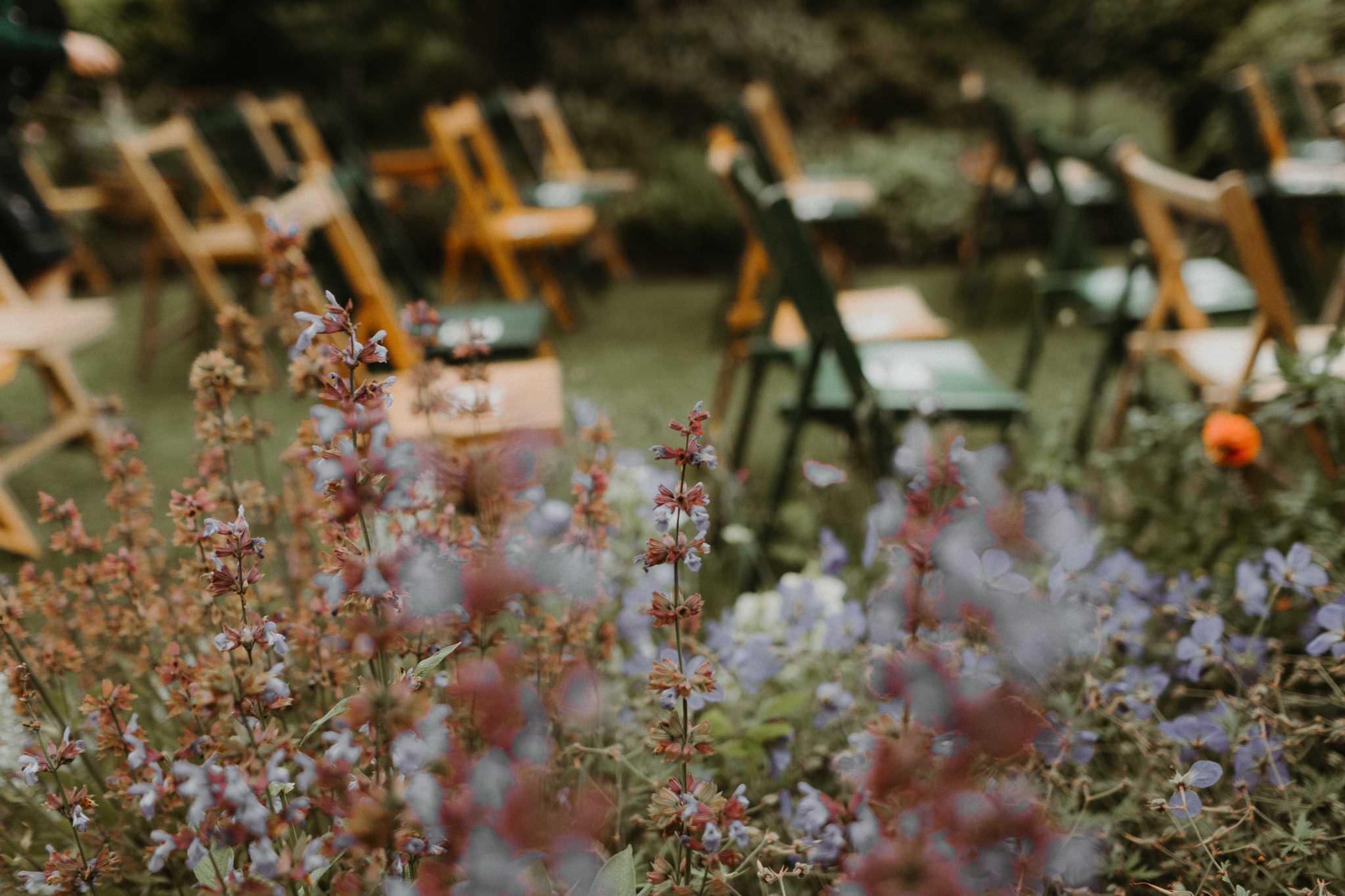 relaxed backyard wedding 009