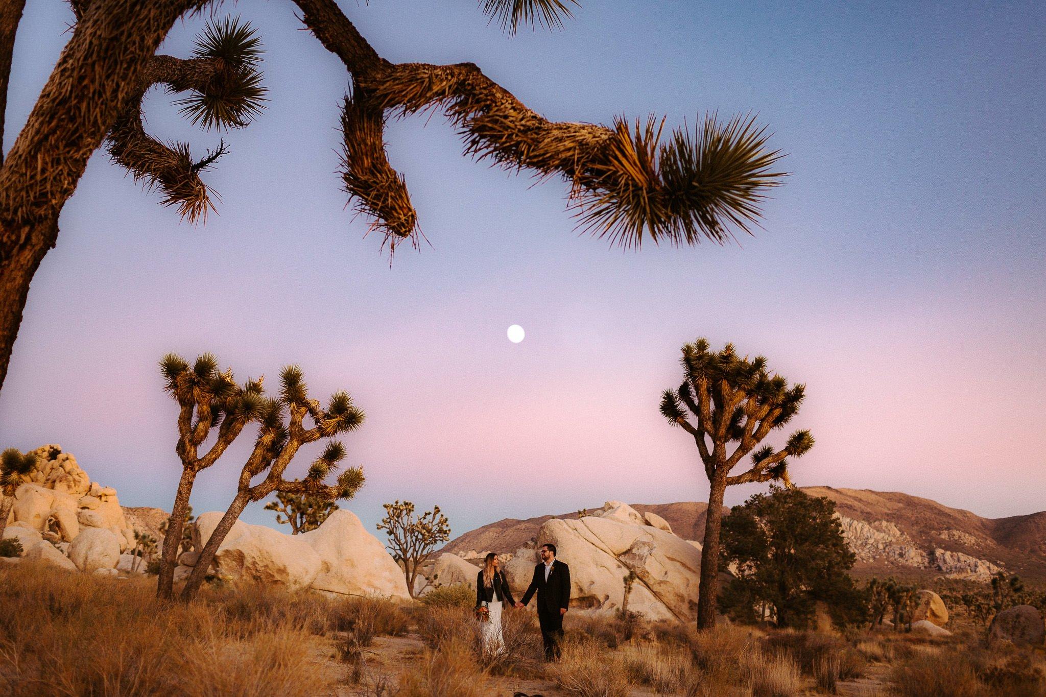 fullerton arboretum wedding 007