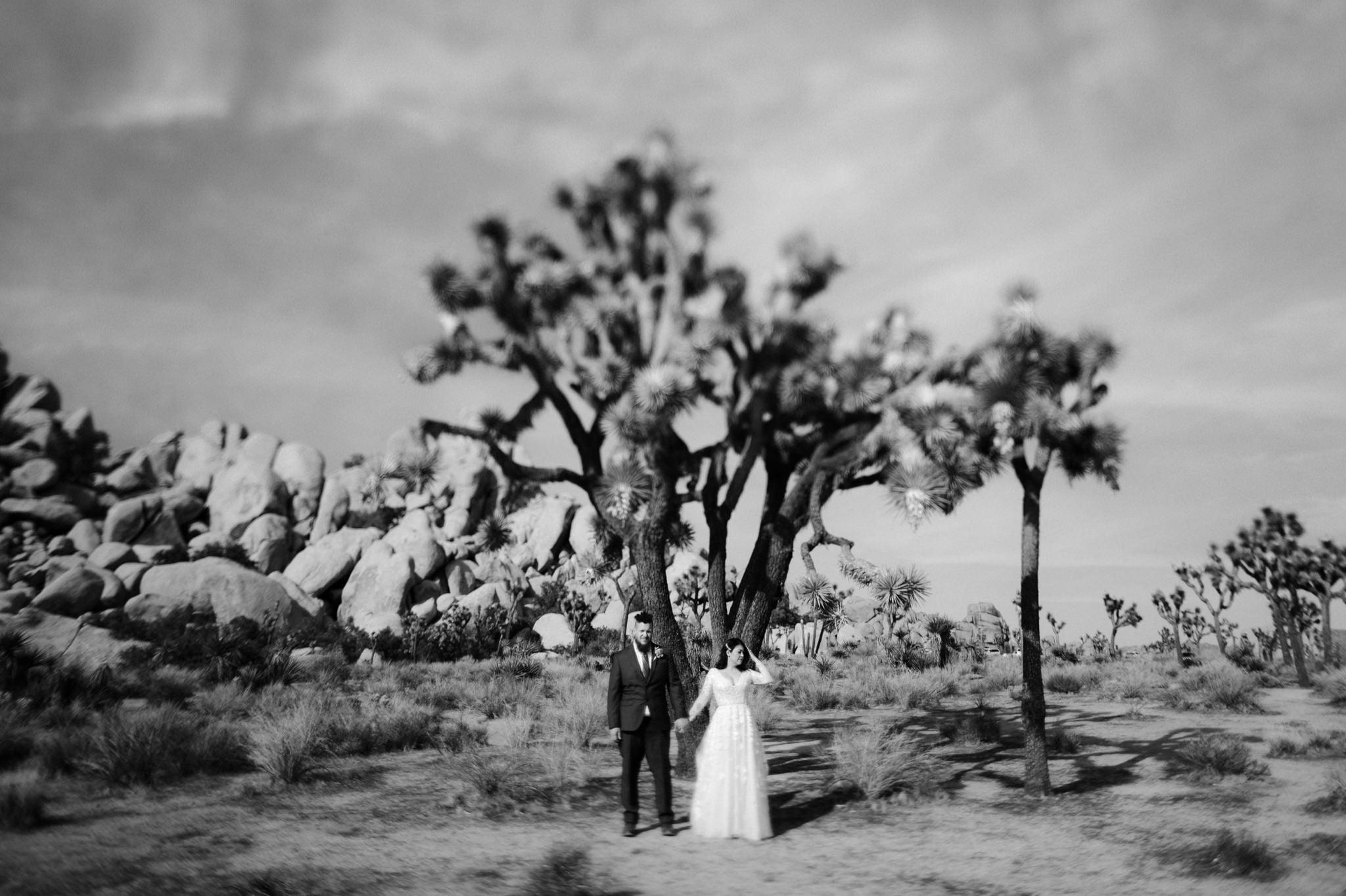 joshua tree elopement 037