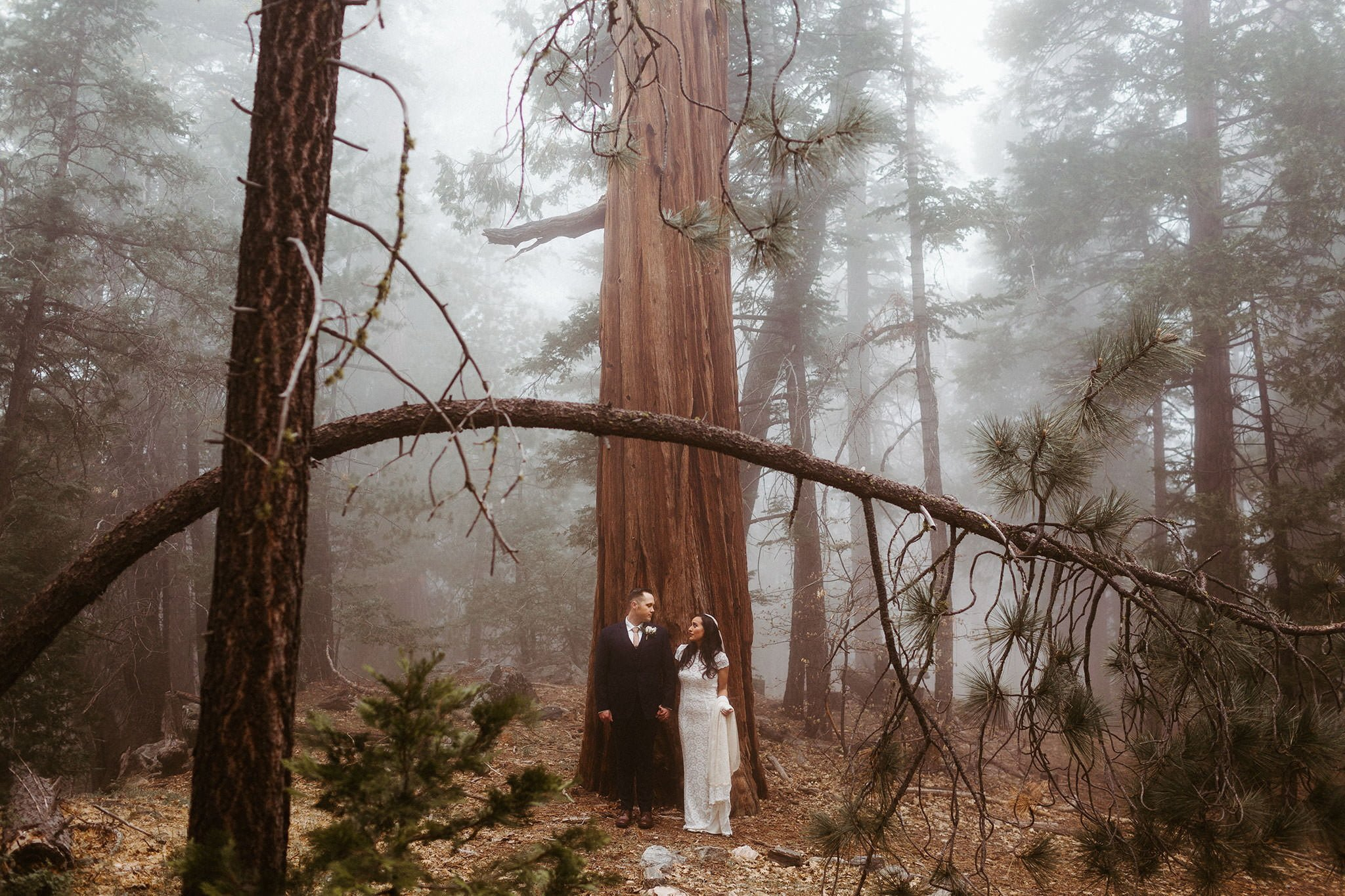 san bernardino national forest elopement 001