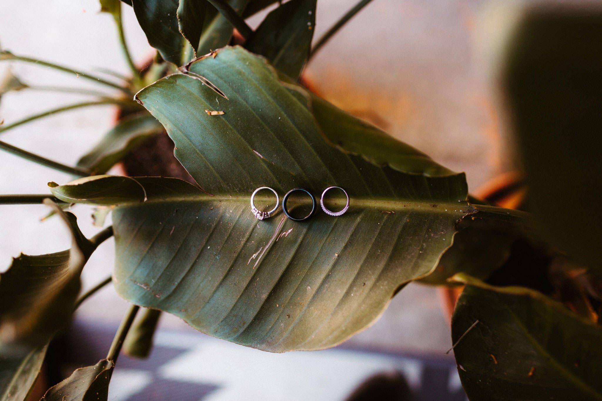 la elopement photos 014