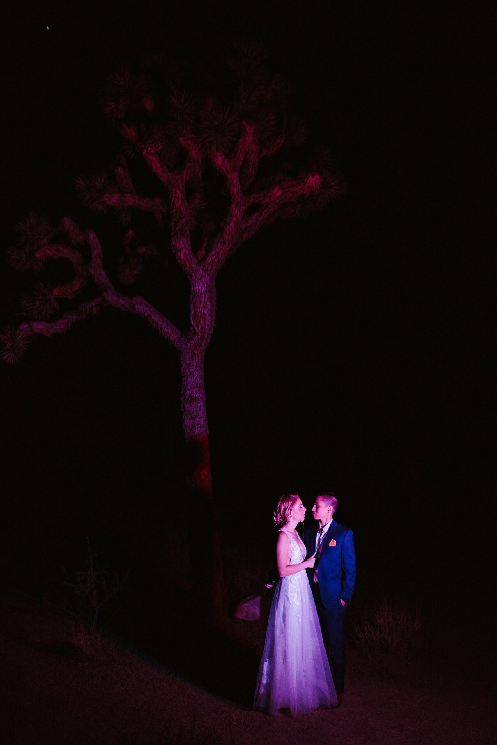 joshua tree wedding 113 scaled