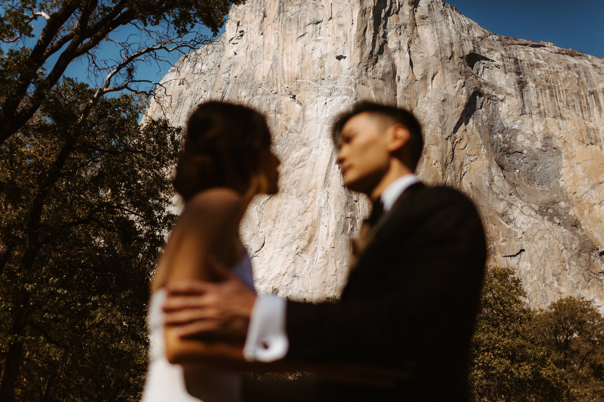 yosemite wedding 038