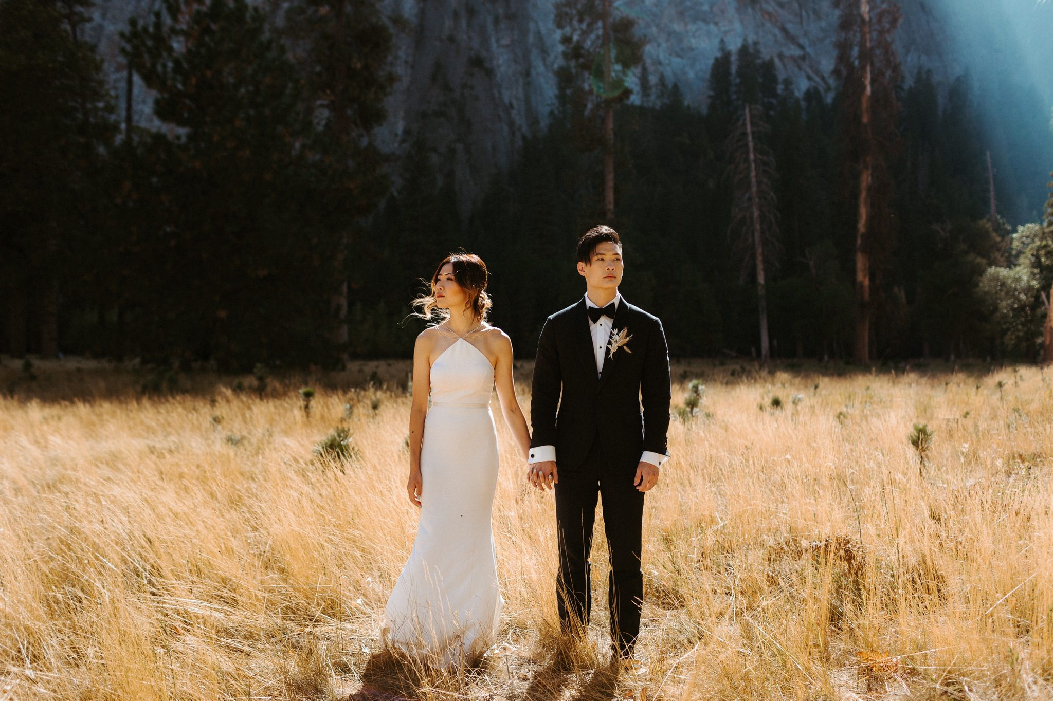 yosemite wedding 041