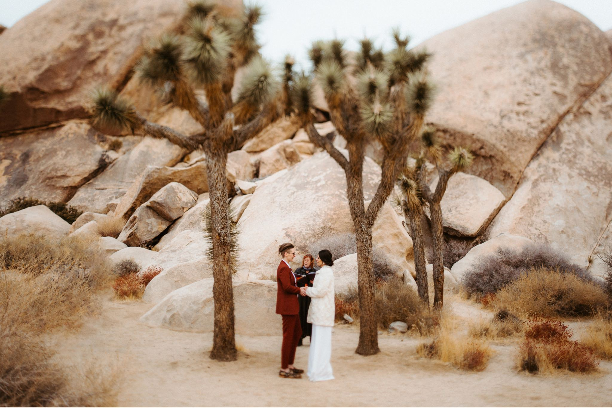 joshua tree wedding 062