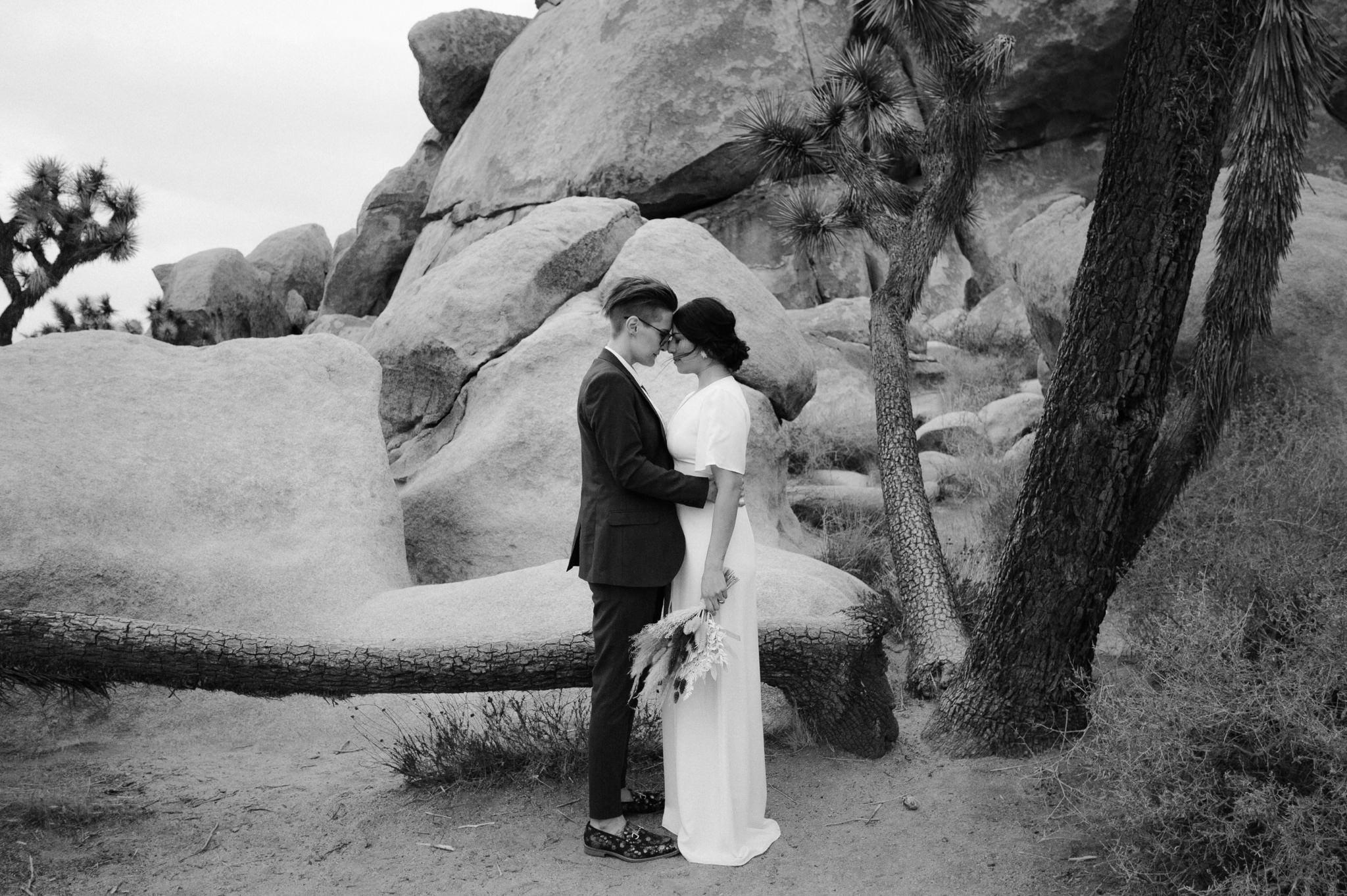 joshua tree wedding 089